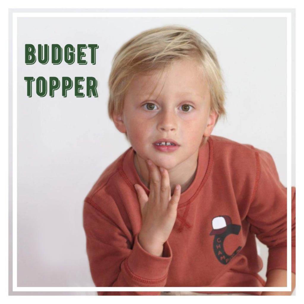 budget_topper_header